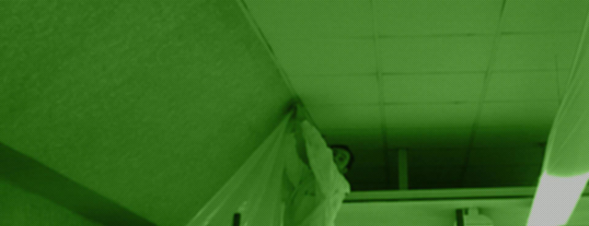 Limpiezas Castor. techos2 Techos